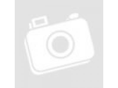 Плунжерная пара, (комплект на ТНВД - 2шт.) SH3/F3 FAW (ФАВ)  для самосвала фото 1 Курган